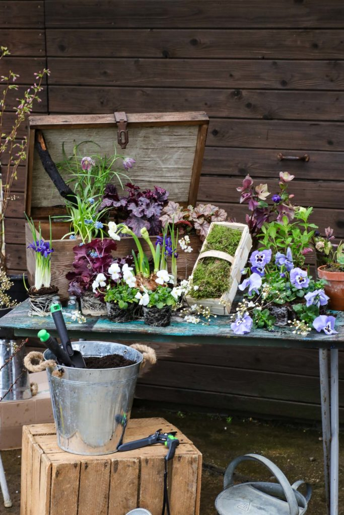 Upcycling Ideen Frühling: alte Holzkiste bepflanzen I #upcycling #ideen #garten #balkon #frühling #diy